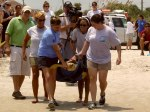 Ponce Inlet's Turtle Hospital Offers Rehab to Injured Sea Turtles and Newborn 'Washbacks'