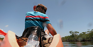 Kayaking the mangrove waterways of Pennekamp Park with James Janesko
